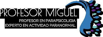 Profesor Miguel Logo